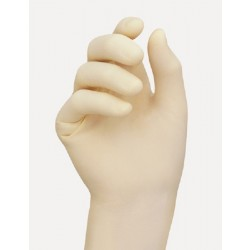 Esteem Stretchy Smooth Synthetic Vinyl Gloves - Powder Free X-Large - 8881B