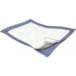 Passport Disposable Underpad - Light Absorbency